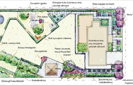 koncepcja ogrodu wrocław