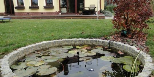 ogród w ligocie małej (4)