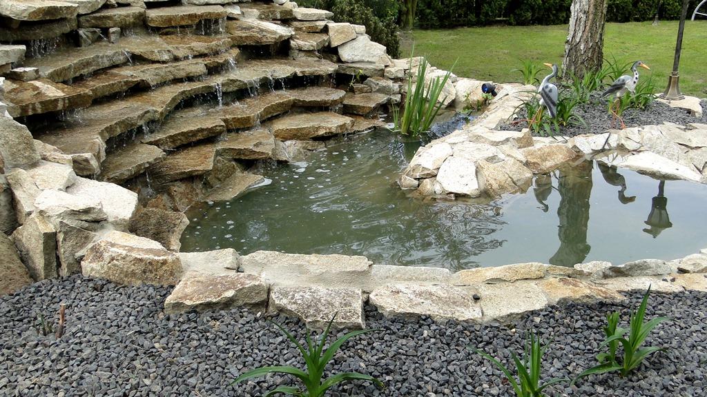 budowa oczek wodnych wrocław