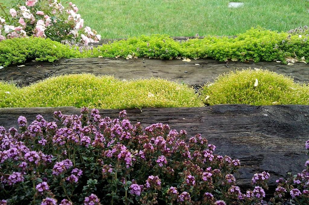 Ogród w Ślęzie