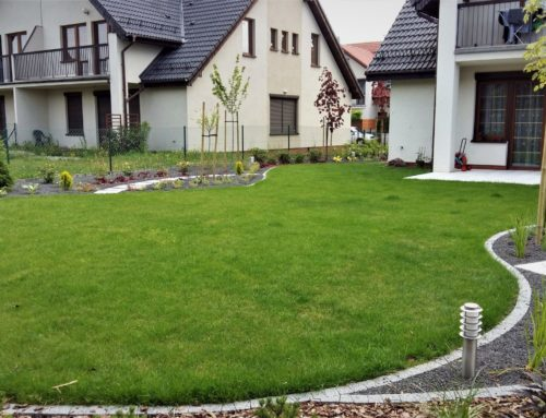 Mały ogródek we Wrocławiu