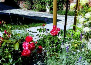 ogród - przystań nad Odrą