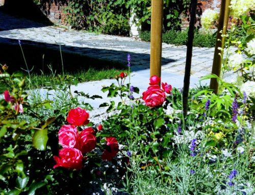 Ogród nad Odrą