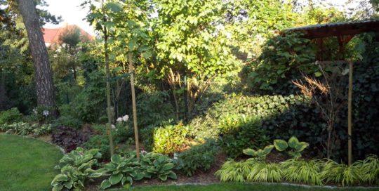 ogród oława (14)