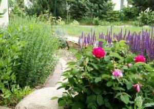 zakladanie ogrodow wroclaw (5)