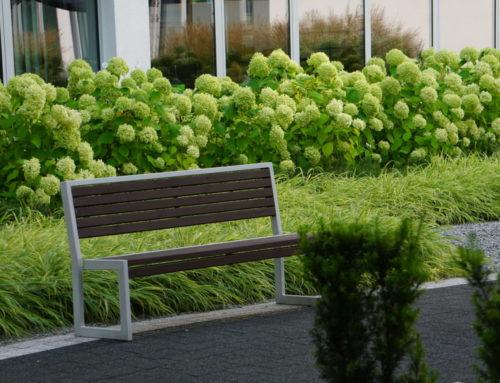 Projekt zieleni w ogrodzie wewnętrznym